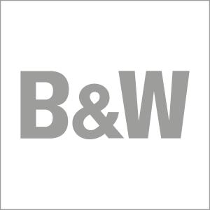 bundw_logo