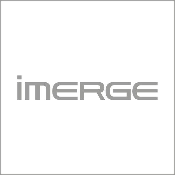 imerge_logo